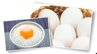 卵.png
