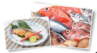 魚介類.png